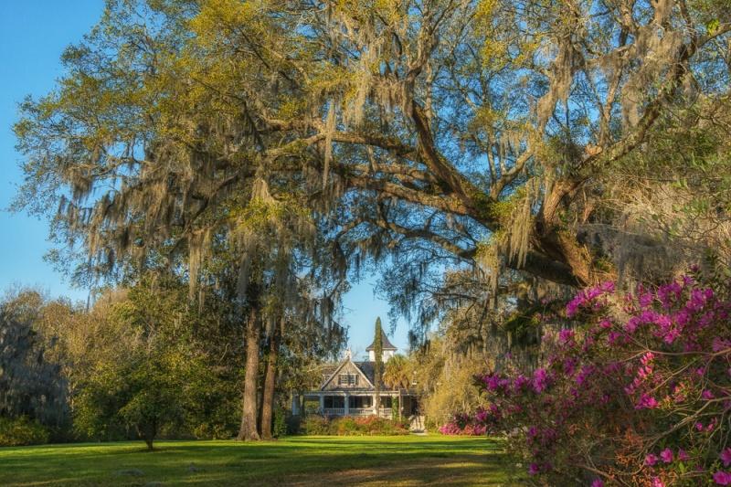 Magnolia View