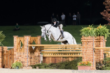 The ultimate oxer
