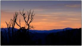 Mammoth Springs Sunrise