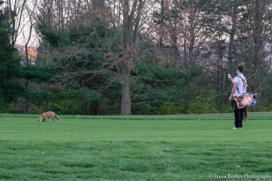 2015-11-05_GolfFox_Booker_0196